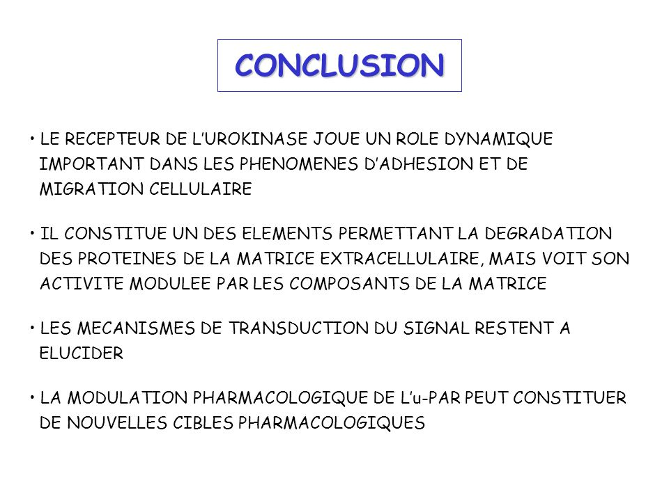 CONCLUSION LE RECEPTEUR DE L'UROKINASE JOUE UN ROLE DYNAMIQUE