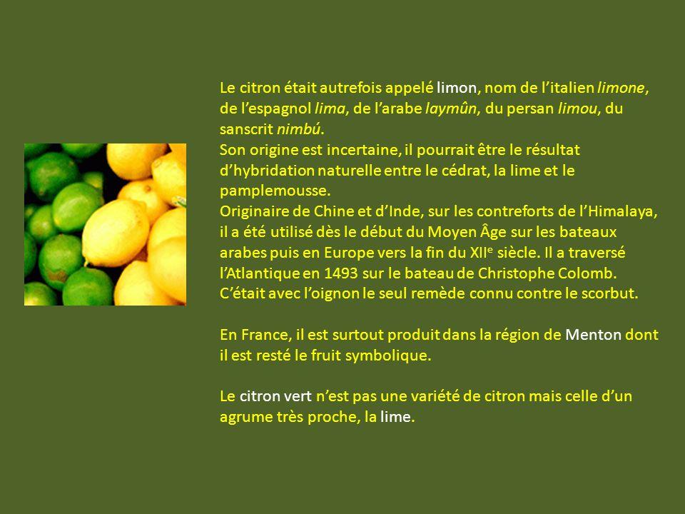 Le citron était autrefois appelé limon, nom de l'italien limone, de l'espagnol lima, de l'arabe laymûn, du persan limou, du sanscrit nimbú.