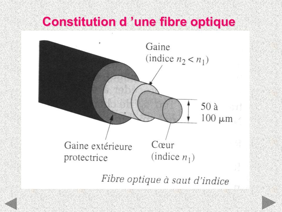 Constitution d 'une fibre optique