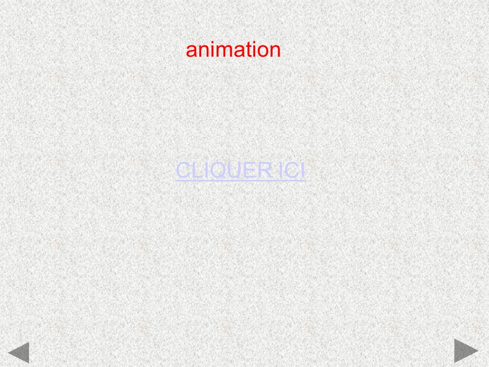 animation CLIQUER ICI