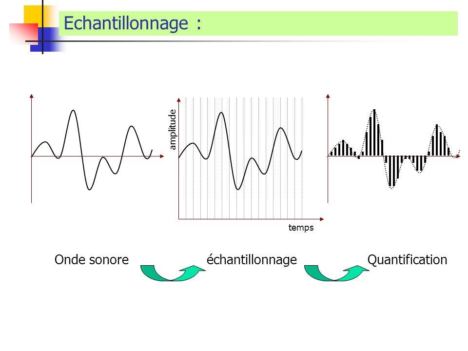 Echantillonnage : Onde sonore échantillonnage Quantification amplitude