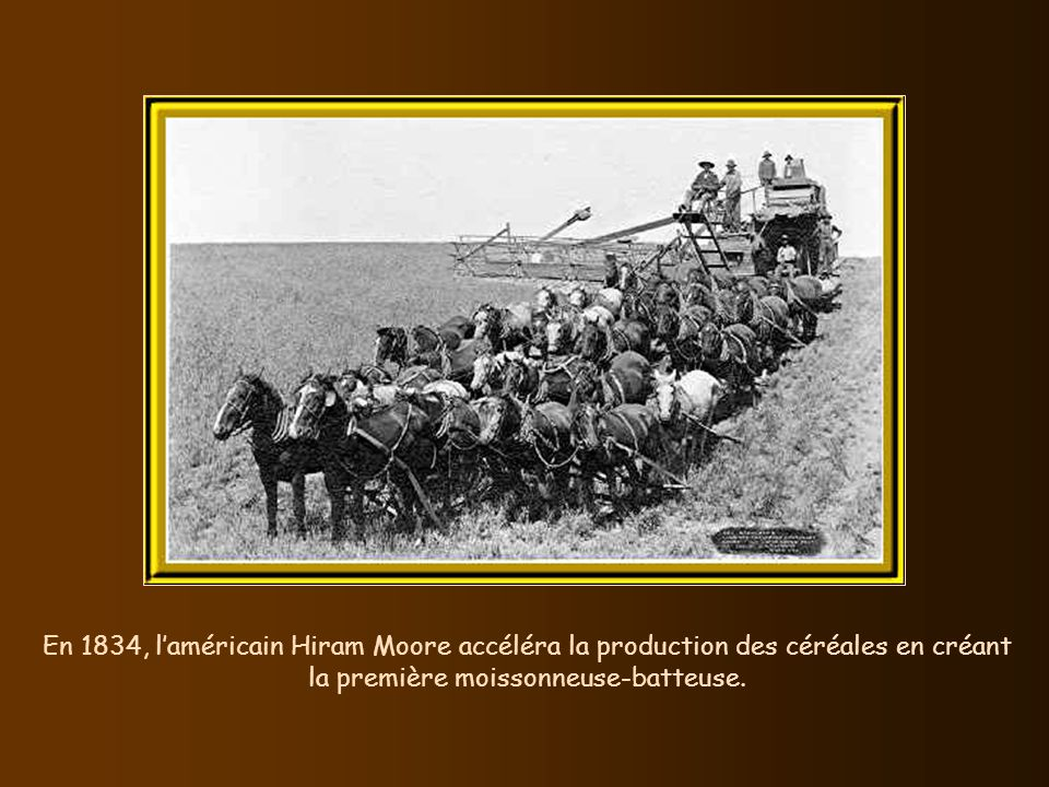 En 1834, l'américain Hiram Moore accéléra la production des céréales en créant la première moissonneuse-batteuse.