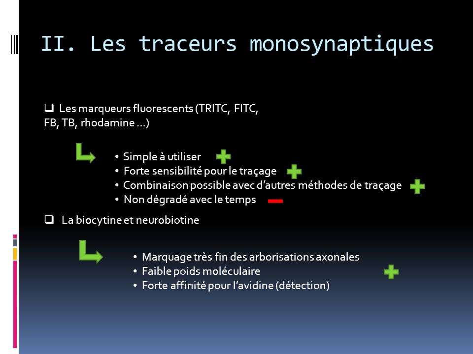 II. Les traceurs monosynaptiques