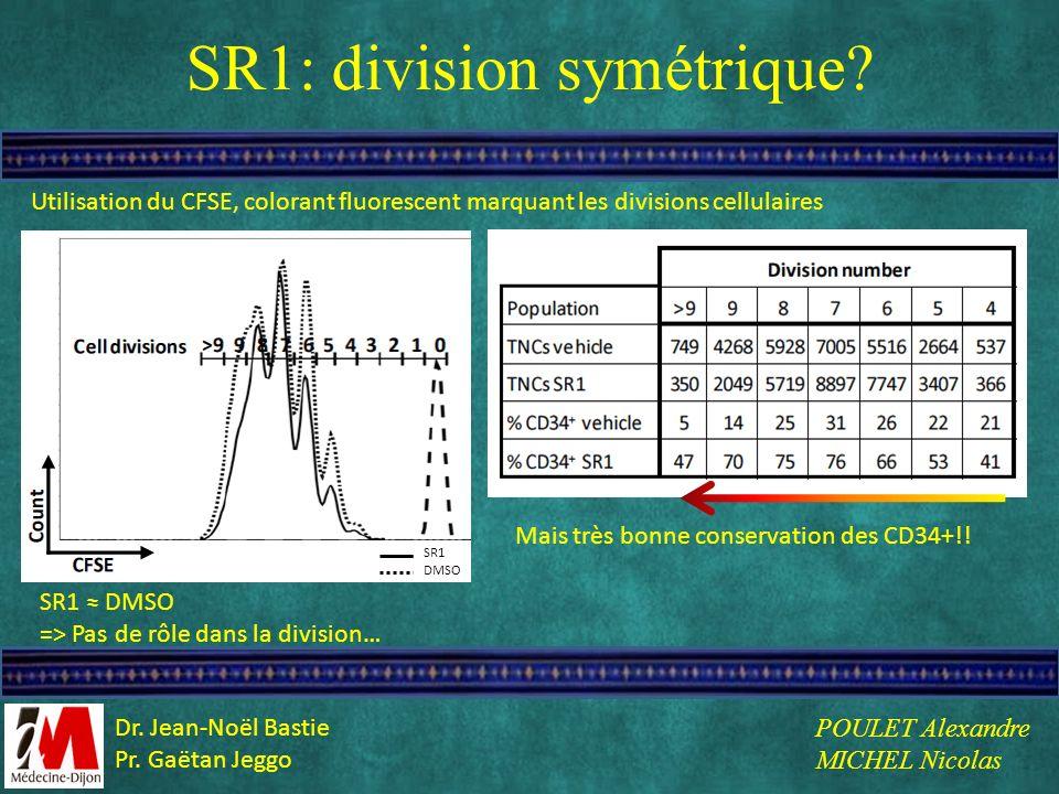 SR1: division symétrique