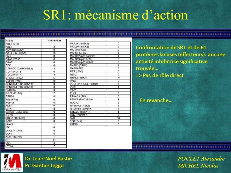 SR1: mécanisme d'action
