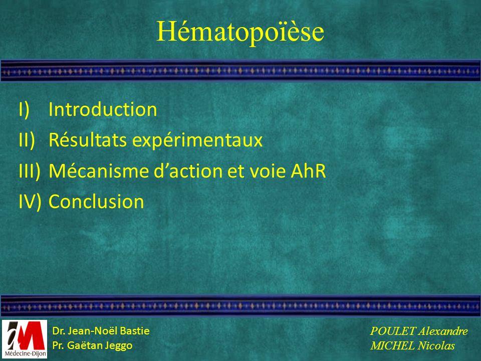 Hématopoïèse Introduction Résultats expérimentaux