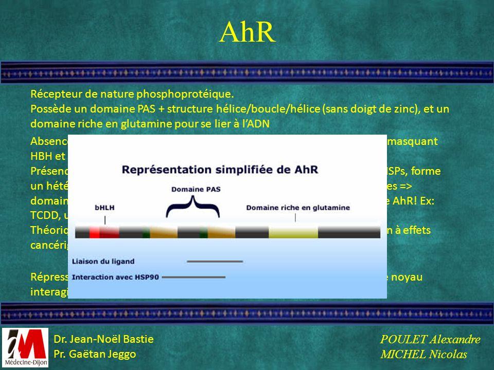AhR Récepteur de nature phosphoprotéique.