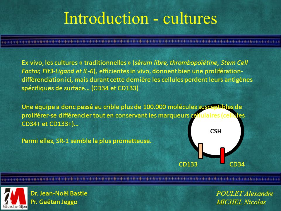 Introduction - cultures