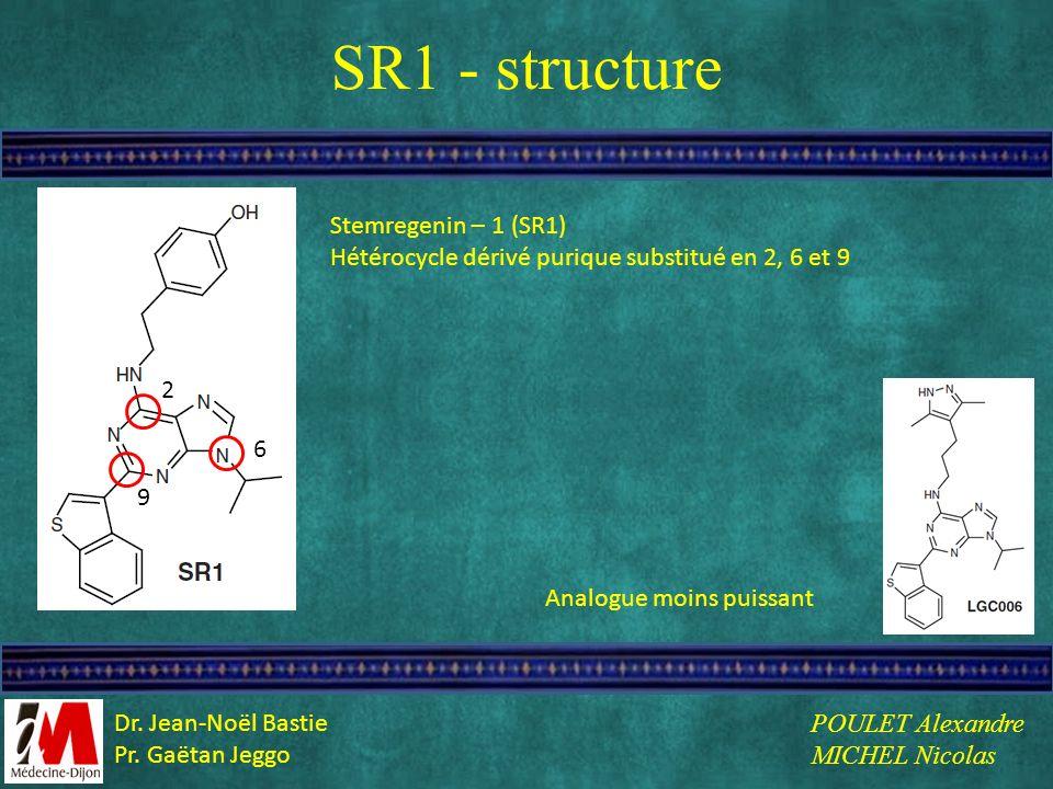 SR1 - structure Stemregenin – 1 (SR1)