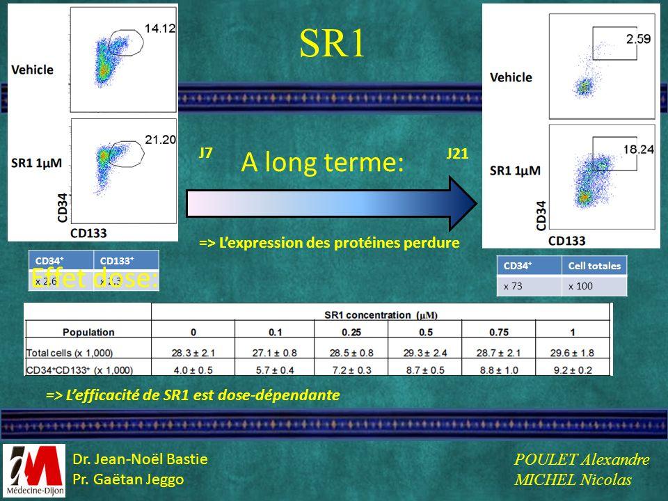 SR1 A long terme: Effet dose: J7 J21