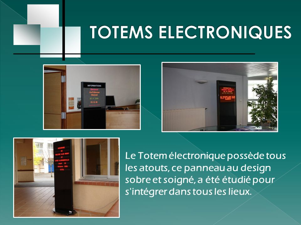 TOTEMS ELECTRONIQUES