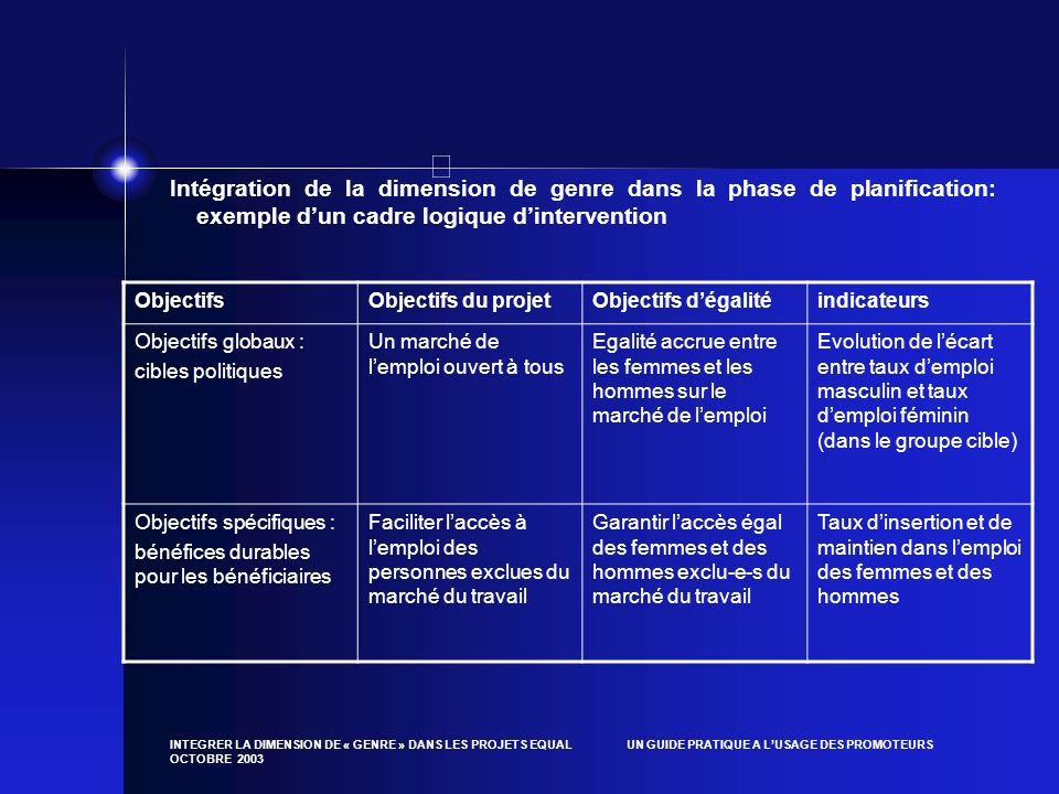 Intégration de la dimension de genre dans la phase de planification: exemple d'un cadre logique d'intervention