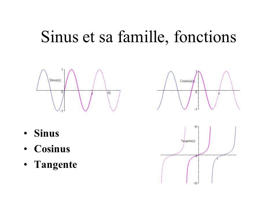 Sinus et sa famille, fonctions