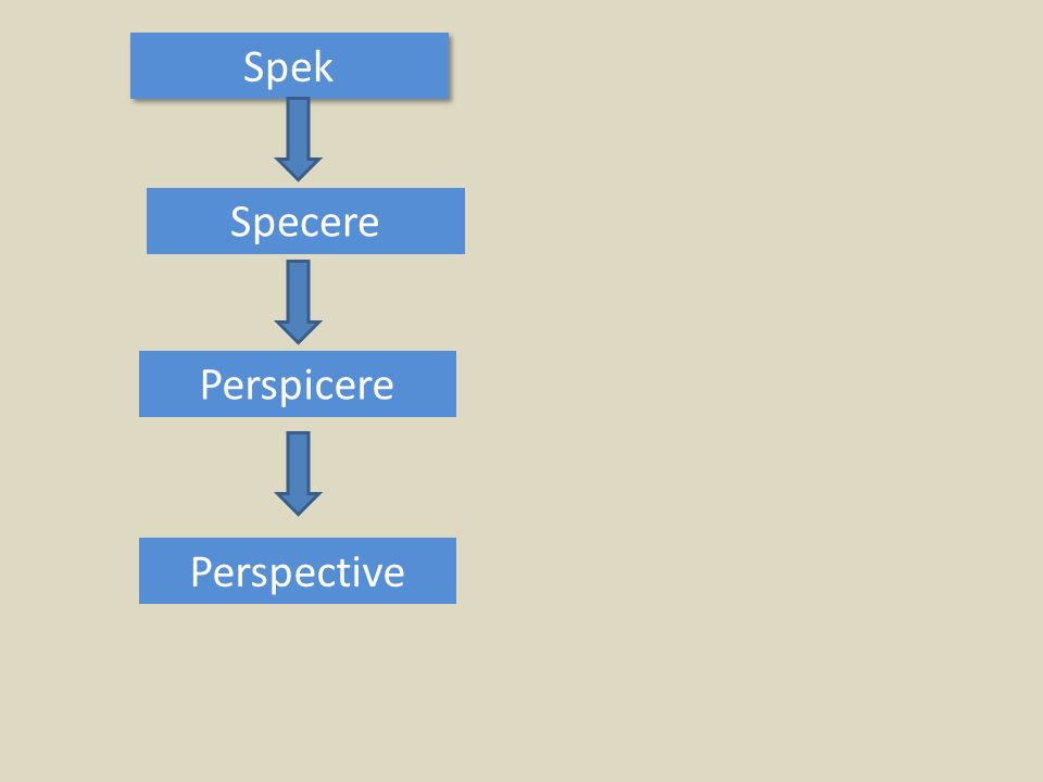 Spek Specere Perspicere Perspective