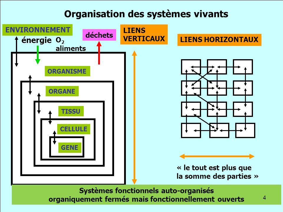 Organisation des systèmes vivants