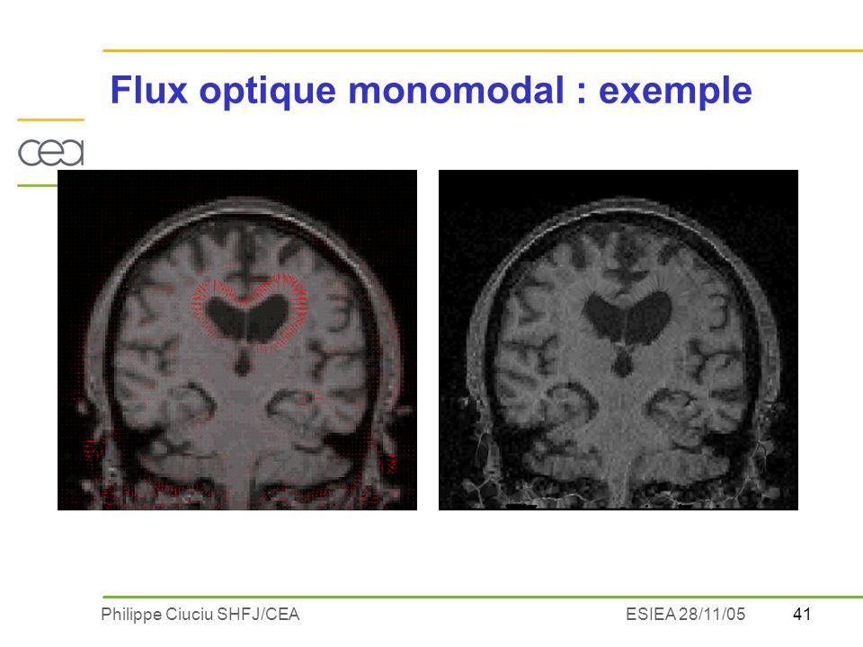 Flux optique monomodal : exemple