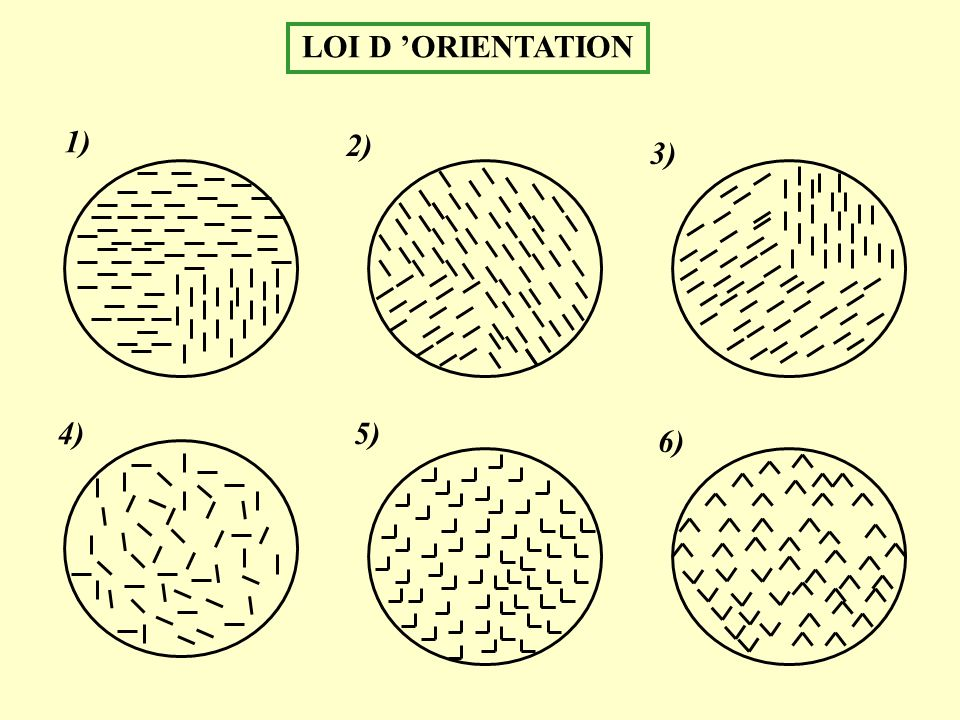 LOI D 'ORIENTATION 1) 2) 3) 4) 5) 6)