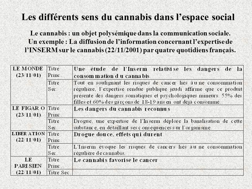 Les différents sens du cannabis dans l'espace social
