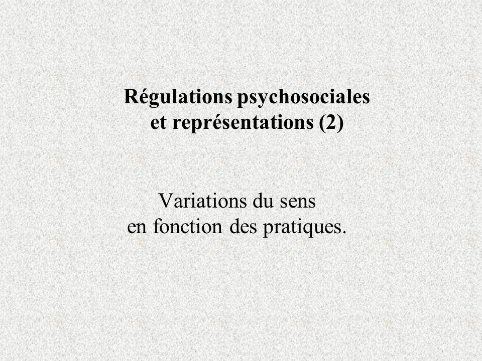 Variations du sens en fonction des pratiques.