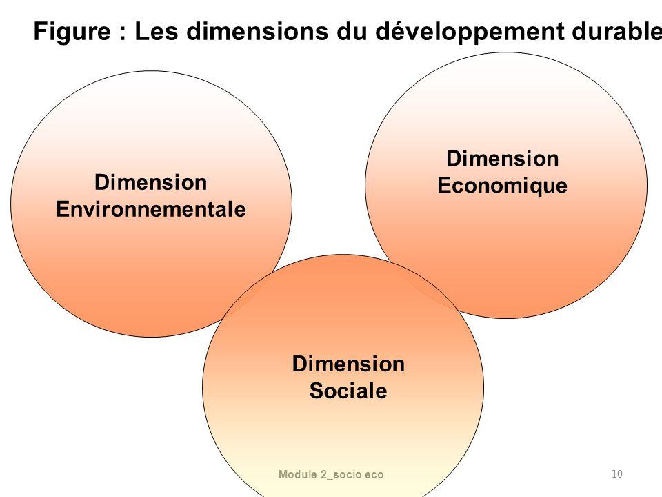 Figure : Les dimensions du développement durable