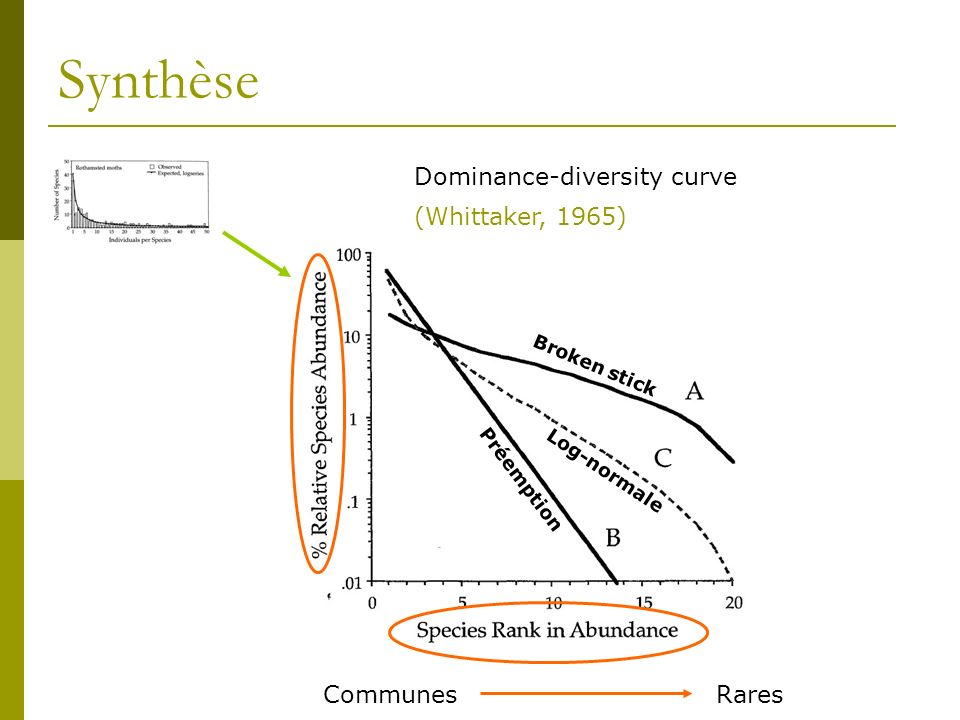 Synthèse Dominance-diversity curve (Whittaker, 1965) Communes Rares