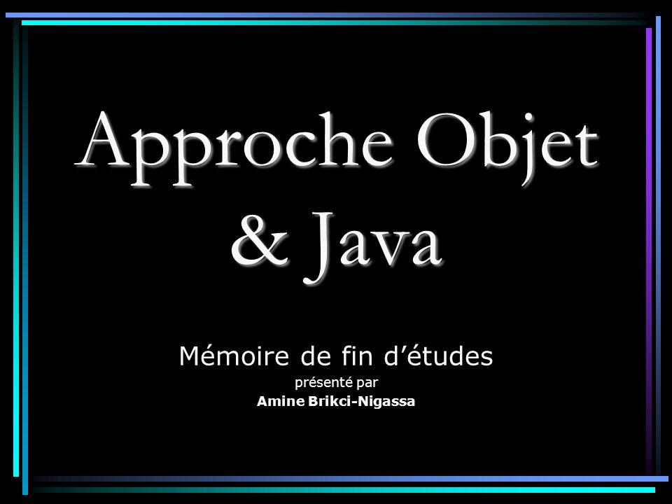 Mémoire de fin d'études présenté par Amine Brikci-Nigassa