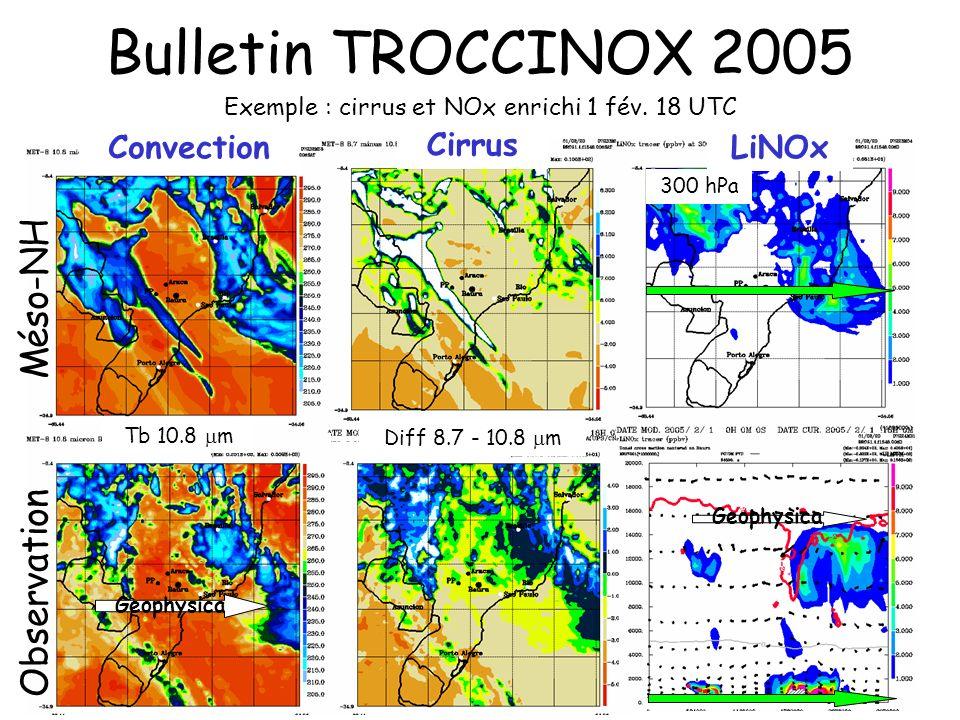 Exemple : cirrus et NOx enrichi 1 fév. 18 UTC