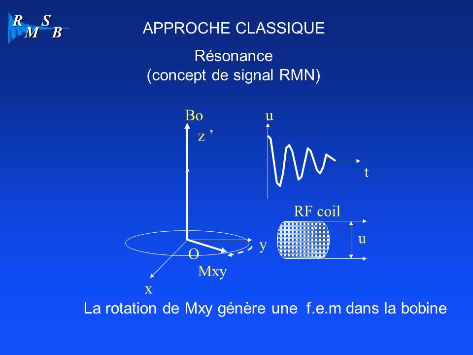 (concept de signal RMN)