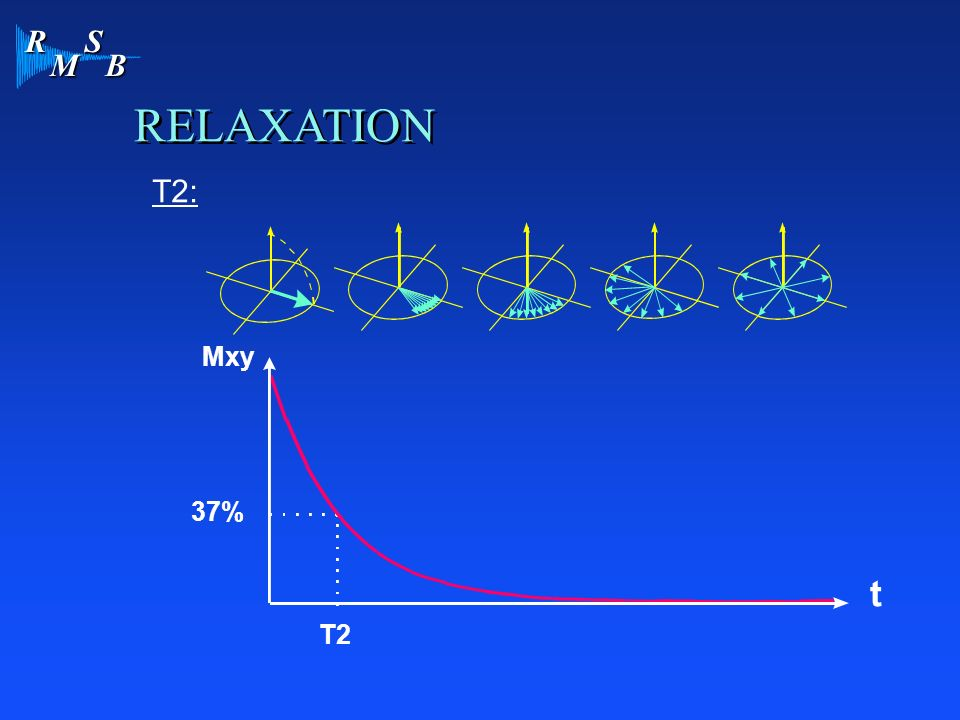 RELAXATION T2: Mxy 37% T2 t