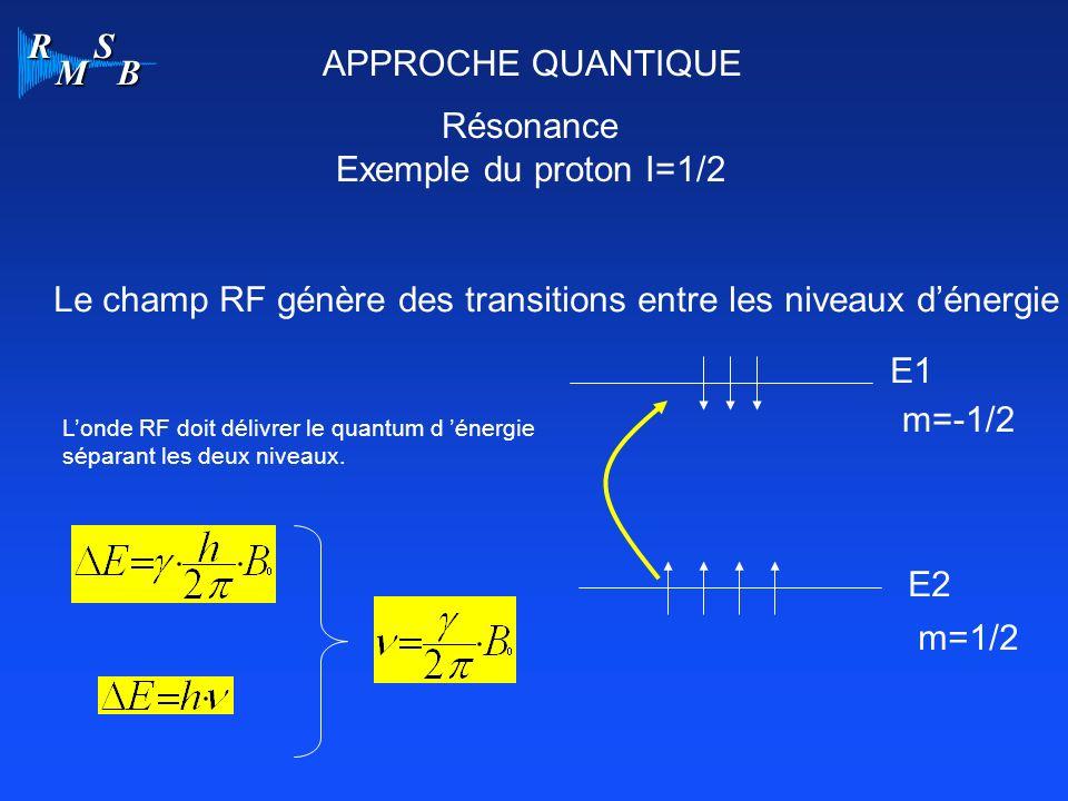 Le champ RF génère des transitions entre les niveaux d'énergie