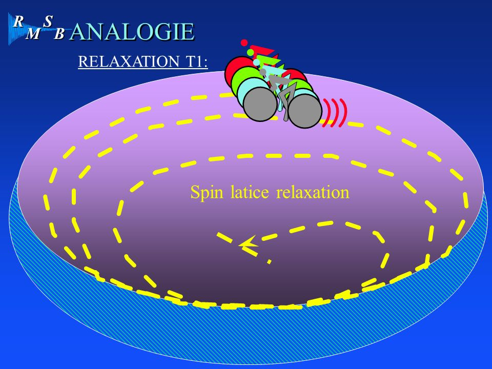 Spin latice relaxation