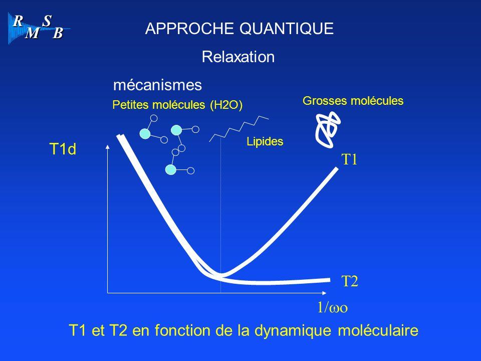 T1 et T2 en fonction de la dynamique moléculaire