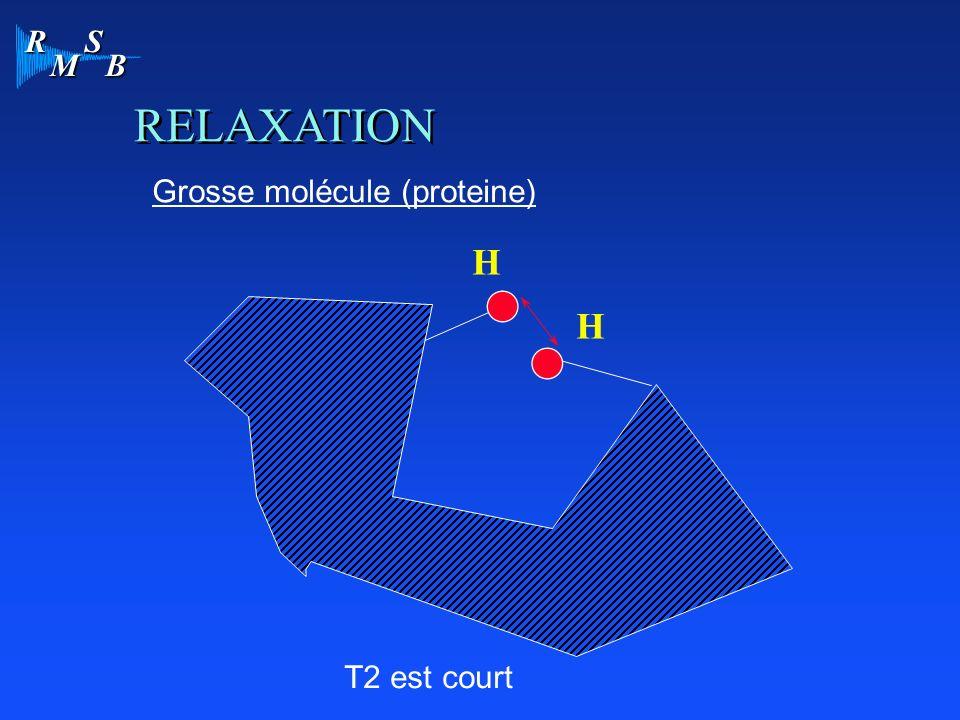 RELAXATION Grosse molécule (proteine) H H T2 est court
