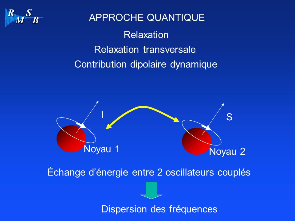 APPROCHE QUANTIQUE Relaxation. Relaxation transversale. Contribution dipolaire dynamique. I. S.