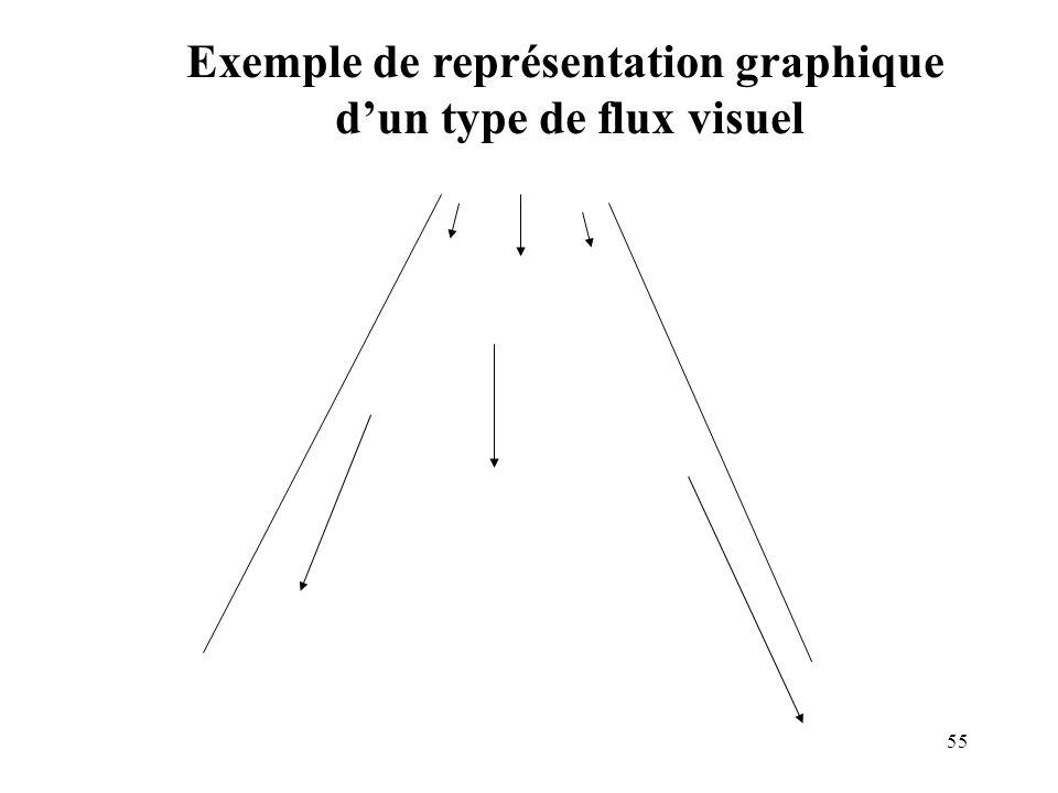 Exemple de représentation graphique d'un type de flux visuel
