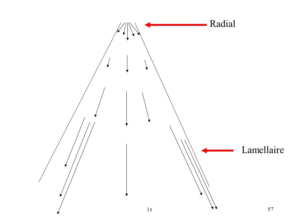 Radial Lamellaire 1s