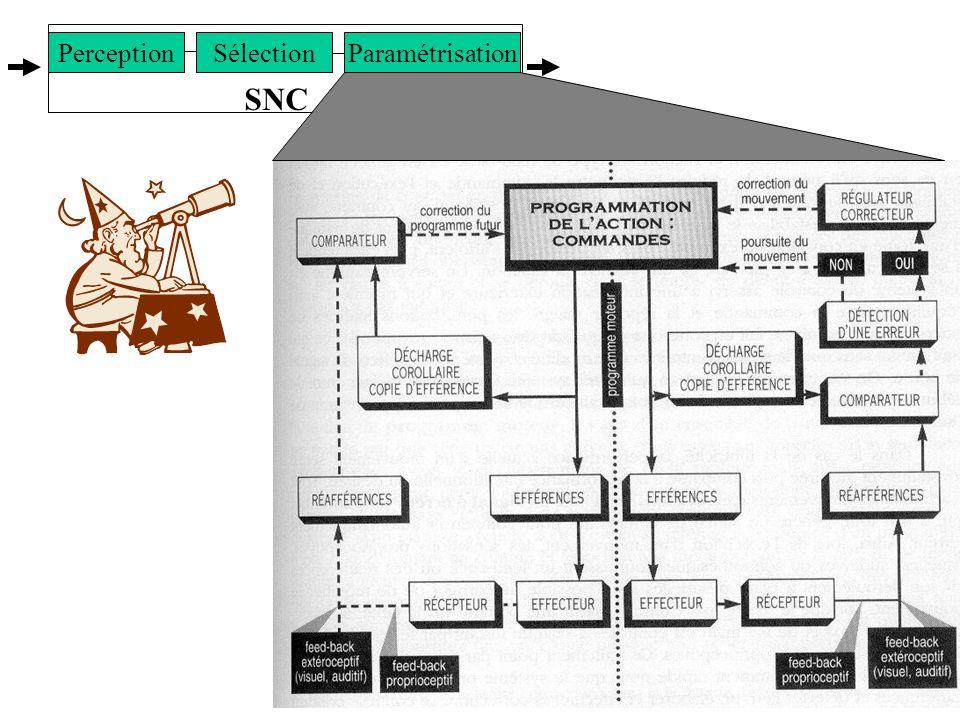 SNC Sélection Paramétrisation Perception