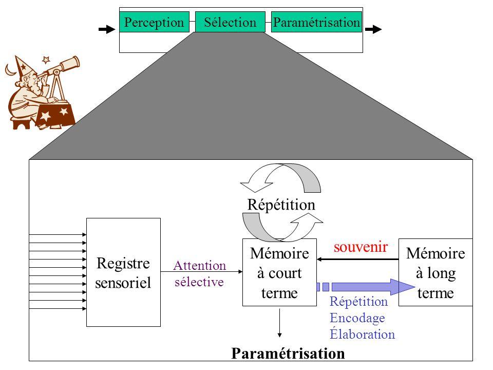 SNC Registre sensoriel Mémoire à court terme Mémoire à long terme