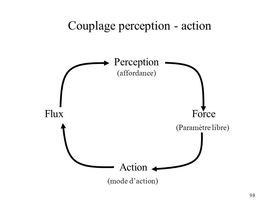 Couplage perception - action