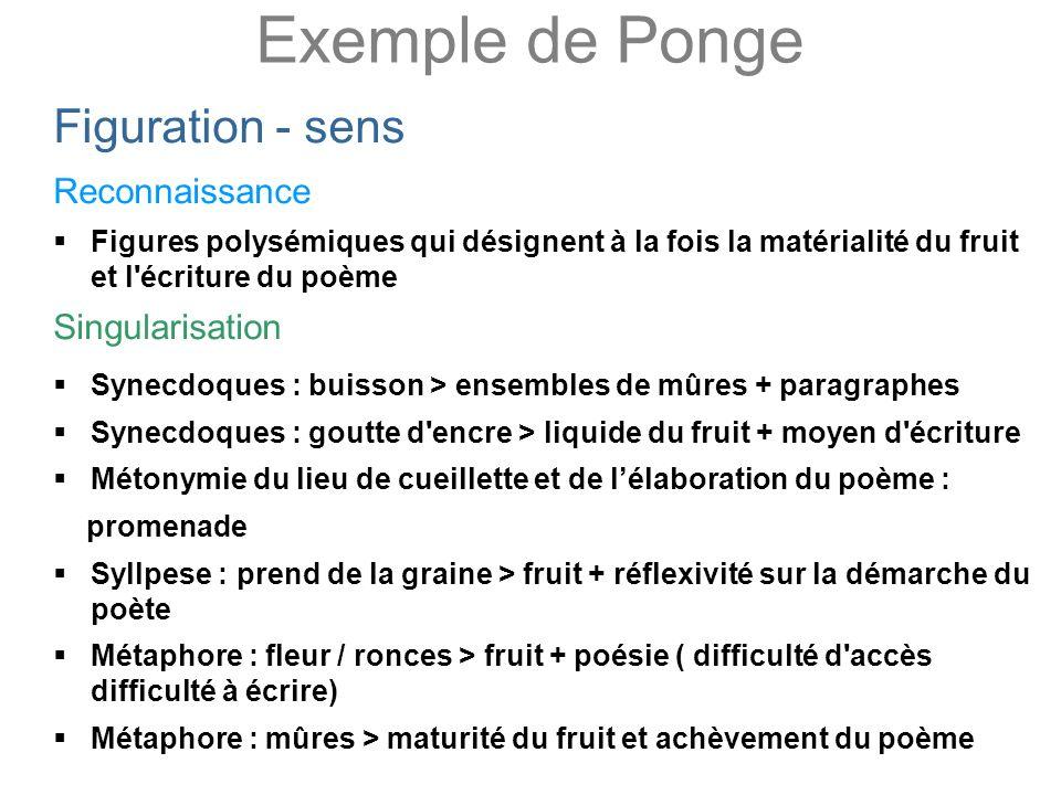 Exemple de Ponge Figuration - sens Reconnaissance Singularisation
