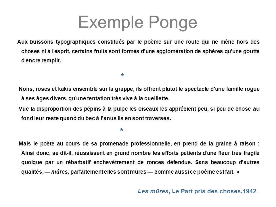 Exemple Ponge