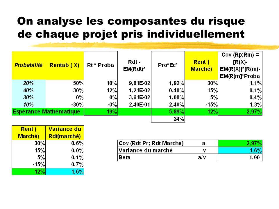 On analyse les composantes du risque de chaque projet pris individuellement