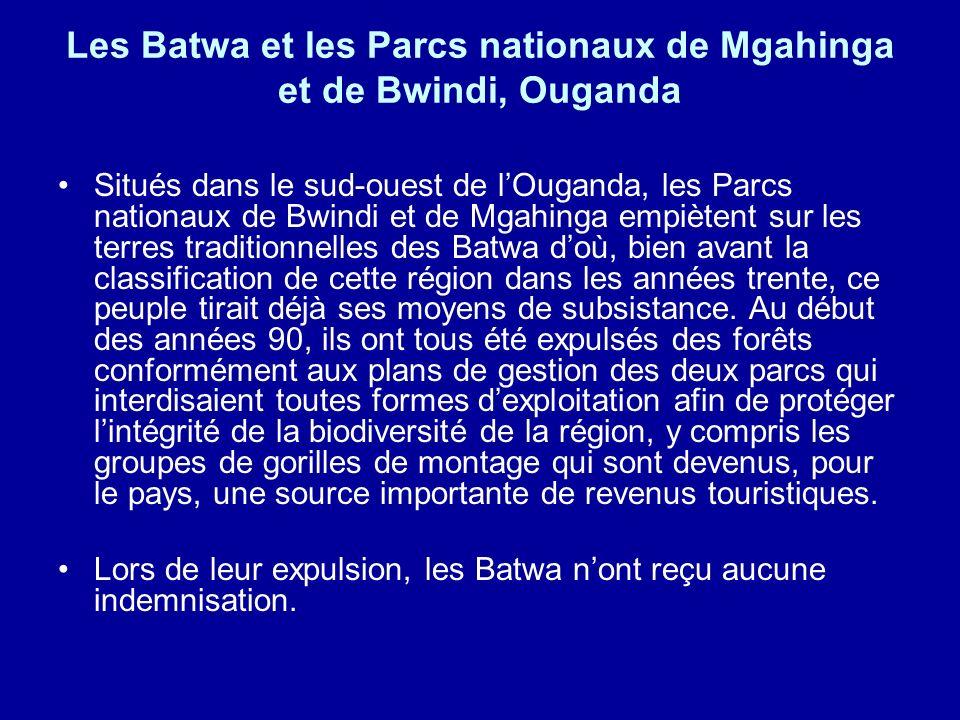 Les Batwa et les Parcs nationaux de Mgahinga et de Bwindi, Ouganda