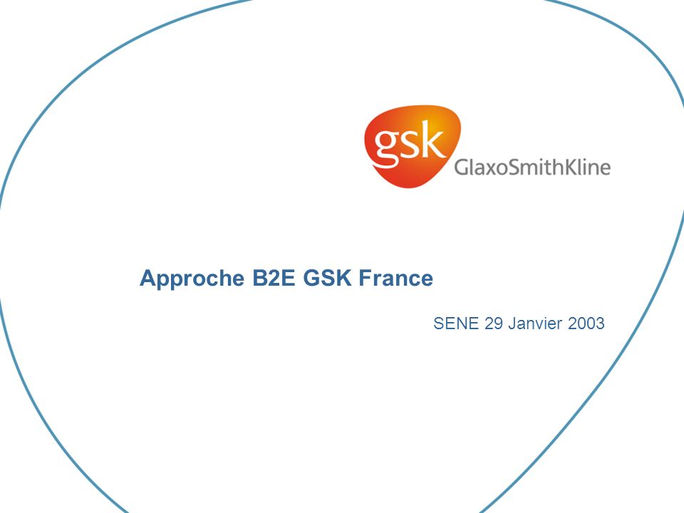 Approche B2E GSK France SENE 29 Janvier 2003