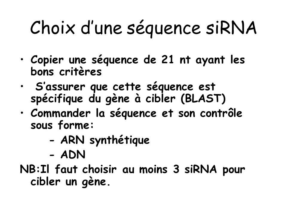 Choix d'une séquence siRNA