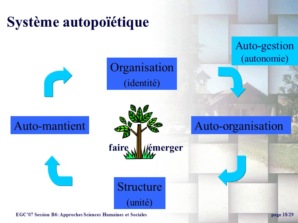 Système autopoïétique