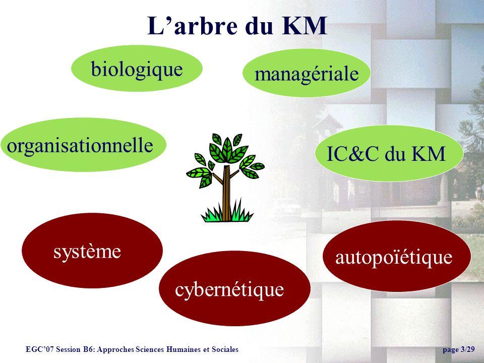 L'arbre du KM biologique managériale organisationnelle IC&C du KM