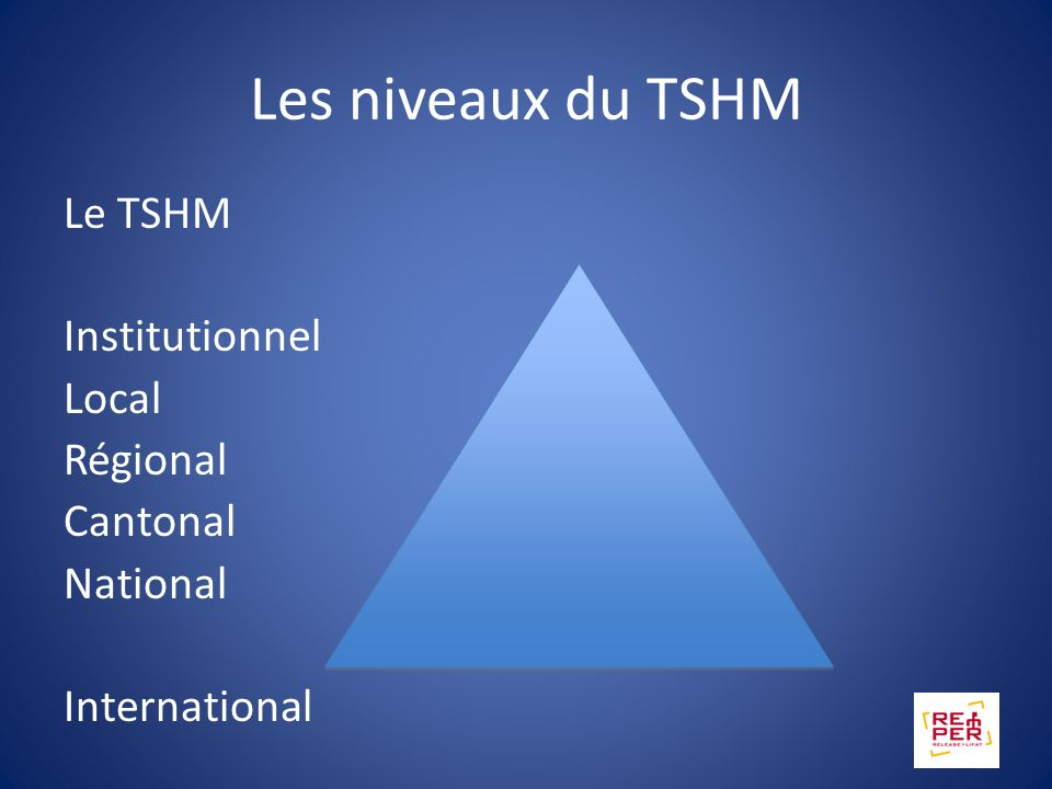 Les niveaux du TSHM Le TSHM Institutionnel Local Régional Cantonal National International