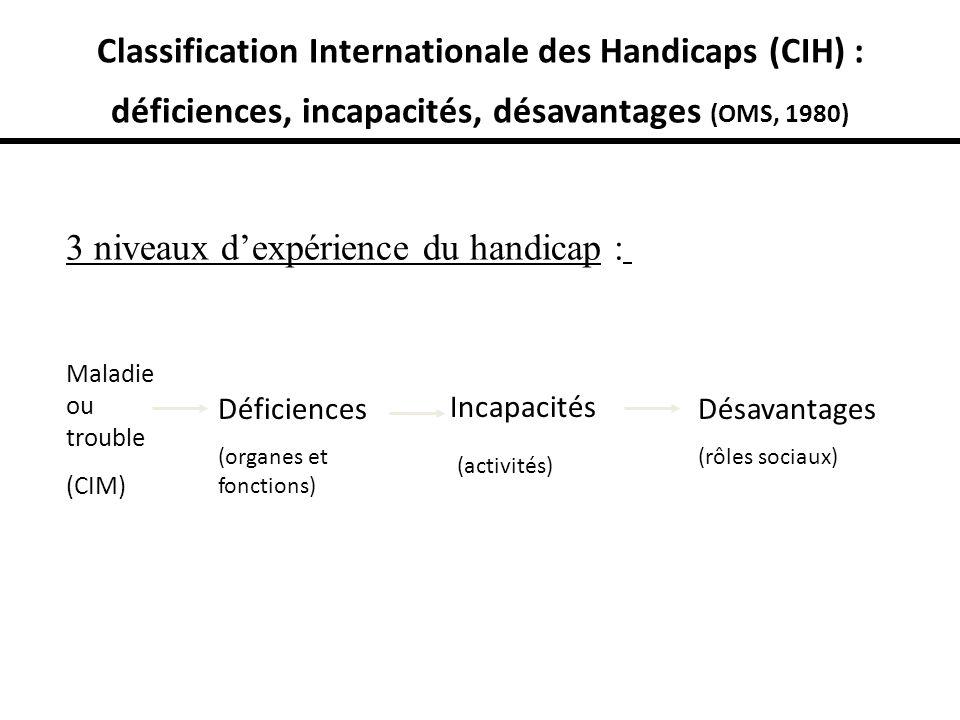 3 niveaux d'expérience du handicap :