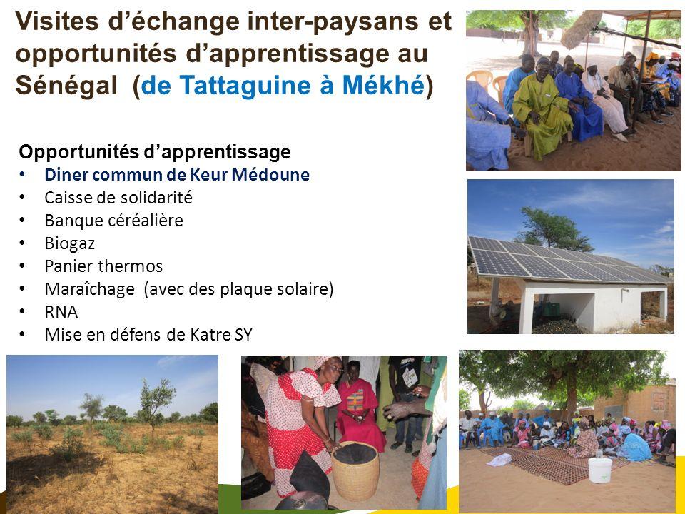 Visites d'échange inter-paysans et opportunités d'apprentissage au Sénégal (de Tattaguine à Mékhé)